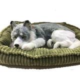 Filhote Perfect Petzzz Cachorro Husk Que Respira De Pelúcia