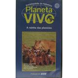 Vhs Planeta Vivo   A Rainha Das Planícies   50 Minutos 1997